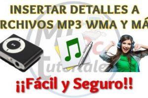 Como Insertar Detalles a Archivos MP3, WMA y más